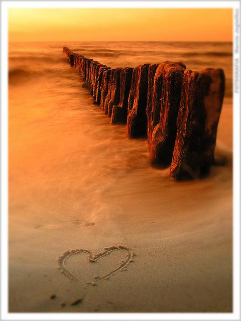 Oceni sliku - Page 3 Love_3_by_mjagiellicz1